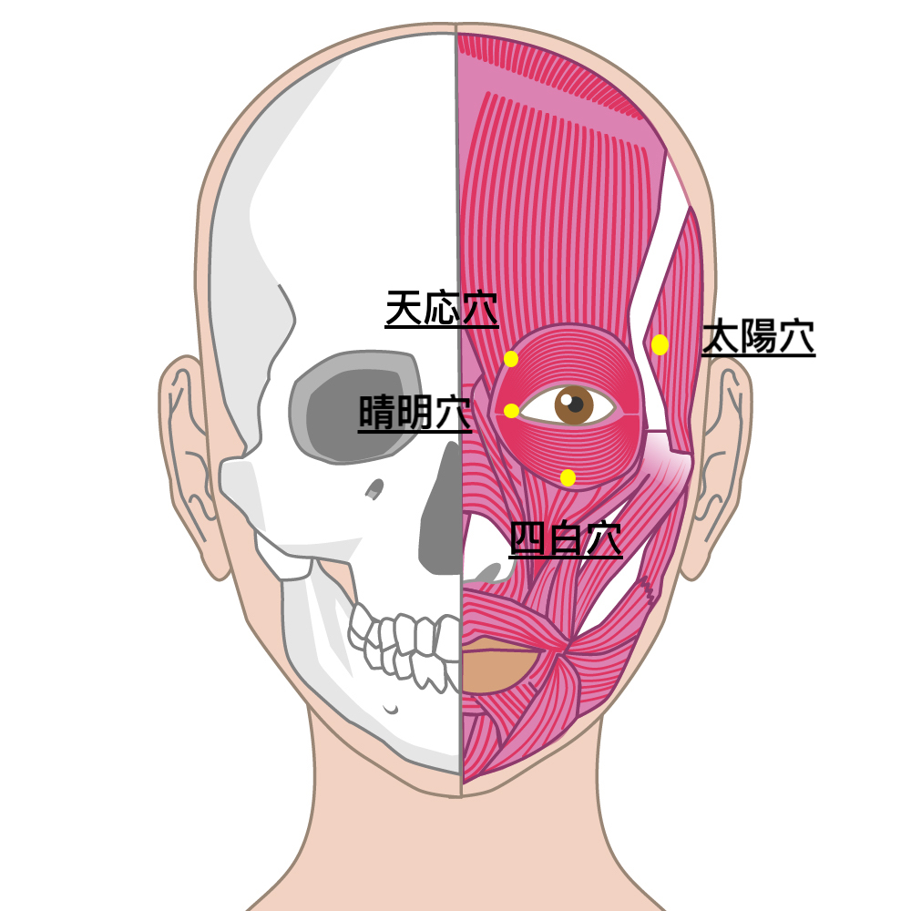 中国式眼の体操法