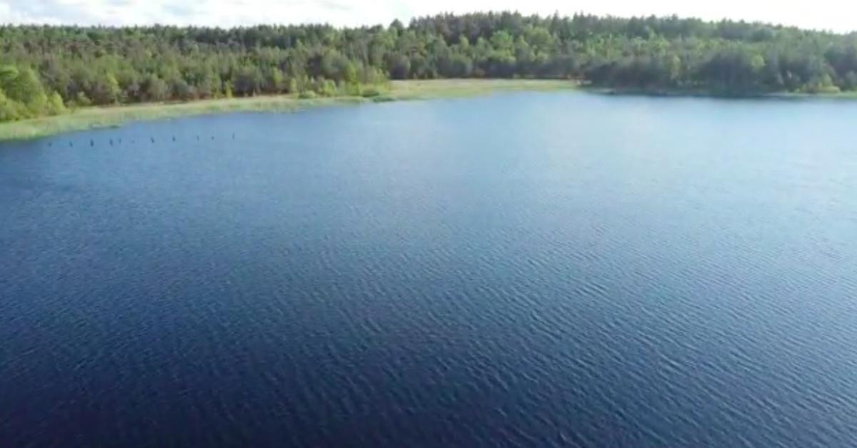 黒い湖の含まれている成分