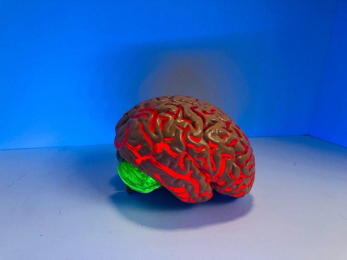 脳内ホルモンが健康を維持する