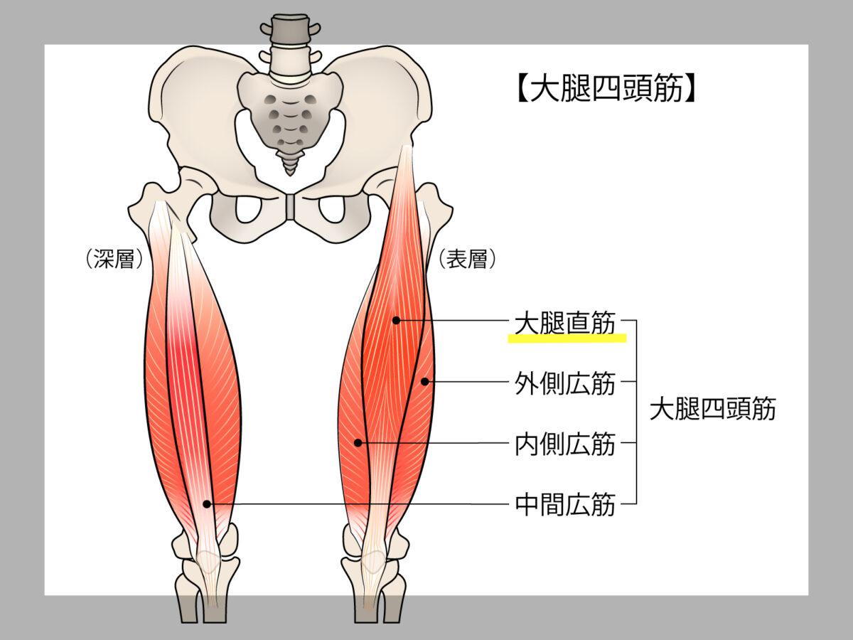 大腿直筋の柔軟性がない