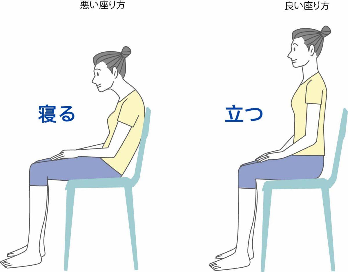 骨盤座位姿勢
